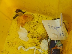 Comida é mistura com papel em lixeira da UFMA (Foto: Teresa Dias/G1)