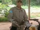 Jiboia é capturada em tanque de combustível de moto no Pantanal