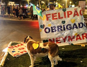 cachorra treino Seleção Brasiliera Goiás protesto (Foto: Alexandre Lozetti)