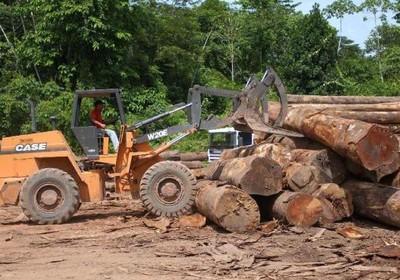 florestas_desmatamento_amazônia (Foto: Reprodução/AgênciaBrasil)