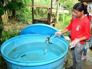 Ações de combate a dengue são intensificadas em Rio Branco após chegada de período de chuvas (Foto: Divulgação/Ascom Prefeitura de Rio Branco)