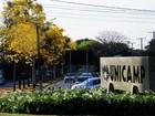 Aluno da rede pública é 'recuperado' na graduação, diz estudo da Unicamp