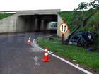 Morre passageira de carro que caiu de viaduto após capivara invadir pista