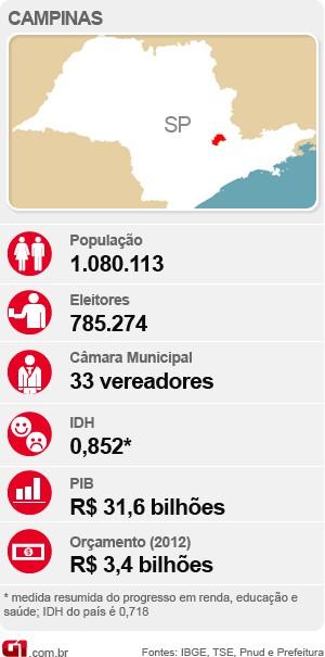 Veja o raio-x com as estatísticas de Campinas para as eleições deste ano (Foto: Arte / G1)