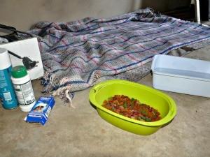 Local onde Scooby dormia na casa no Aero Rancho (Foto: Fernando da Mata/G1 MS)