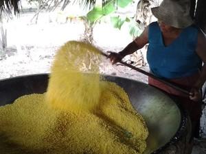 Por semana são produzidos 320 litros de farinha na comunidade da Taba Lascada (Foto: Emmily Melo/G1)