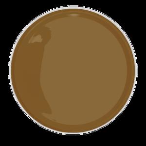 A Lukscolor elegeu como cor do ano um marrom com toques de amarelo queimado, que ganhou o nome de Lizard (LKS 2275). A partir de R$ 66 o galão de 3,6 L (Foto: Divulgação)