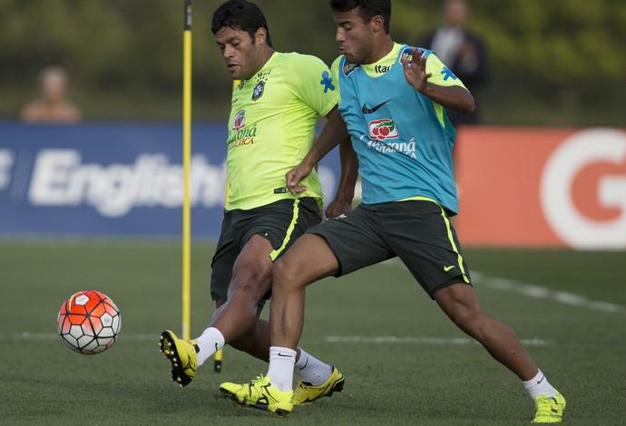 Hulk Brasil (Foto: Leo Correa / Mowa Press)