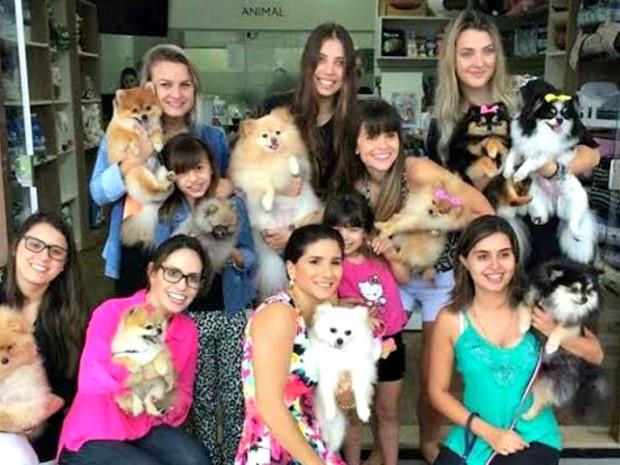 Grupo realiza encontros para day care dos animais (Foto: Reprodução / Facebook)