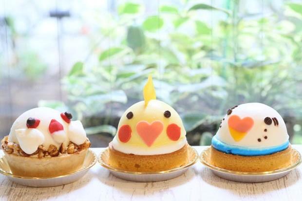 Bird café atrai fãs de aves em Tóquio (Foto: Divulgação)