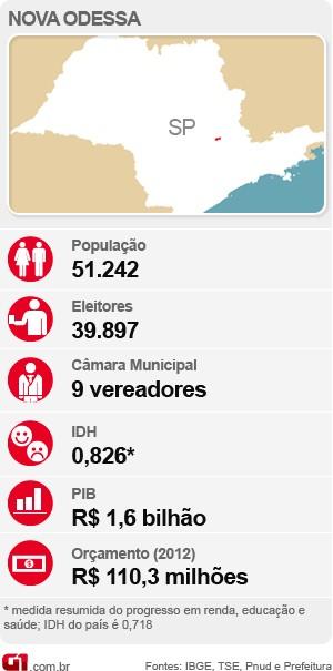 Veja o raio-x com as estatísticas de Nova Odessa para as eleições deste ano (Foto: Arte / G1)