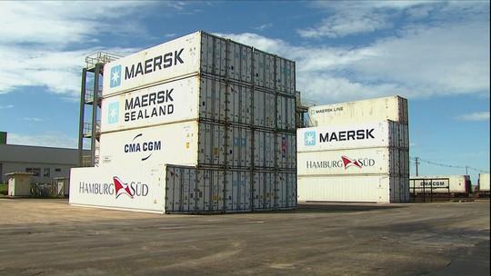 Exportações estão suspensas e cargas de frango se acumulam no PR