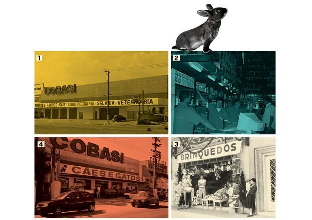 Evolução: a Cobasi (1 e 2), ainda no varejo agropecuário, e sua transformação  em megaloja (4) pet, em 1996. O começo de tudo: a primeira unidade  (3) do Bazar 13, que hoje é a 25ª loja da Cobasi   (Foto: Getty Images)