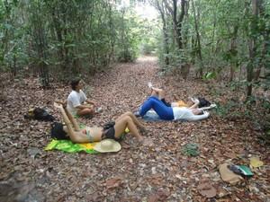 As trilhas ecológicas foram incrementadas com paradas para meditação, no Conde, Paraíba. (Foto: Divulgação)