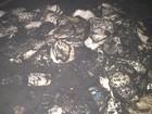 Escola é alvo de vandalismo e tem almoxarifado queimado (Murillo Velasco/G1)