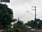 Ventos de 20km/h nesta quinta causam prejuízos em Manaus