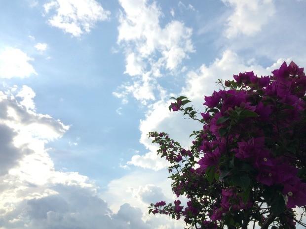 Tempo vira na tarde desta sexta-feira (13) em Campo Grande (Foto: Isabela Cavalcante/G1 MS)