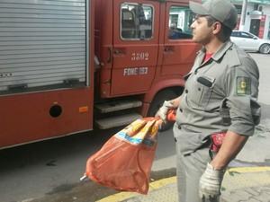 Bombeiro que realizou o resgate do animal no centro da cidade (Foto: Clic Camaquã)