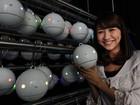 Robôs em forma de bola vão medir níveis de pólen no Japão