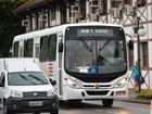 Blumenau prevê  40% de ônibus novos (Divulgação)