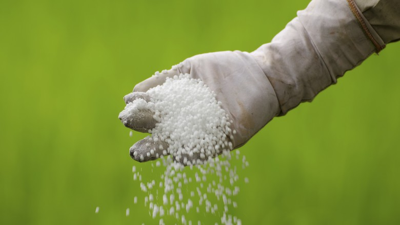agricultura_fertilizante (Foto: Thinkstock)