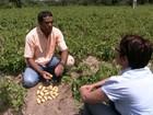 Mudar radicalmente forma de produzir é o desafio da agricultura orgânica
