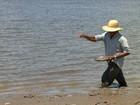 Vazante lenta do rio compromete o plantio de malva e juta no AM