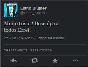 Elano se desculpa no twitter (Foto: Reprodução/Twitter)