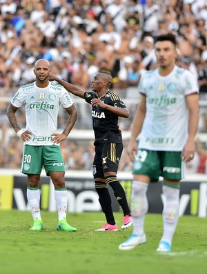 Ponte Preta x Palmeiras Felipe Melo (Foto: Marcos Ribolli)