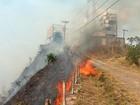 Bombeiros combatem incêndios em BH e na Região Metropolitana