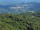 Monte Verde: verão no distrito atrai turistas pelo clima fresco e natureza