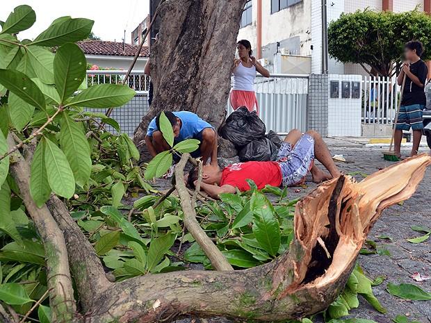 Dois homens caem da mesma árvore em João Pessoa (Foto: Walter Paparazzo/G1)