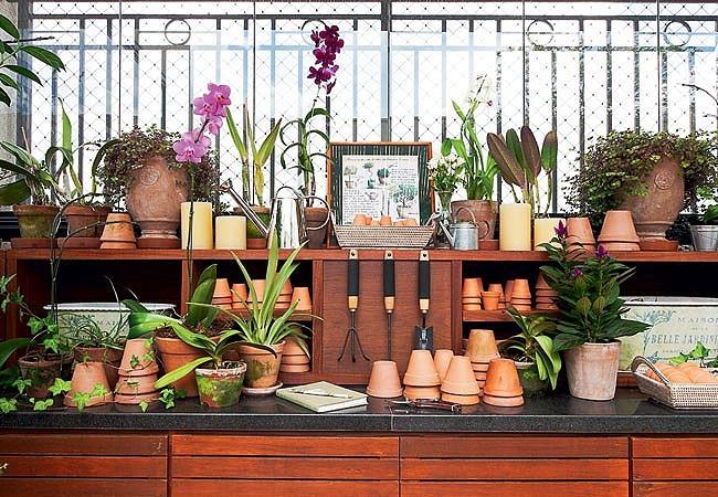 Prefira os vasos de barro, que drenam a água com mais eficiência. Este cantinho leva a assinatura da paisagista Claudia Muñoz  (Foto: Lilian Knobel/Casa e Jardim)