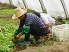 Sesc de Piracicaba celebra Dia do Meio Ambiente com ações educativas
