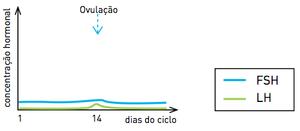 Gráfico C (Foto: Reprodução/UERJ)