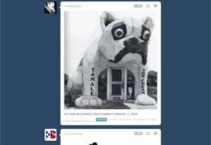 Tumblr é um serviço  onde permite  onde usuários criem blogs usando imagens (Foto: Divulgação)