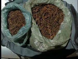 Maconha teria sido roubada de dentro da delegacia (Foto: Divulgação / Polícia Militar)