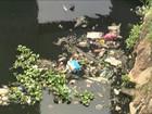 Movimento alerta os brasileiros sobre preservação da reserva de água doce