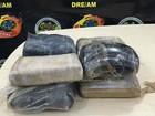 Casal é preso após PF achar 8kg de droga (Divulgação/ PF)