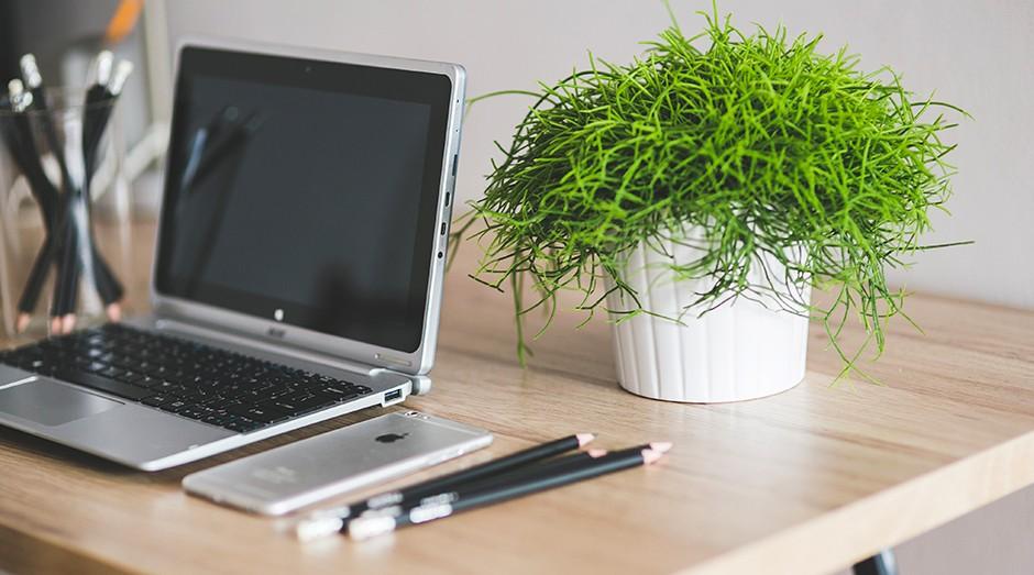 mesa, trabalho, computador, planta (Foto: Kaboompics)