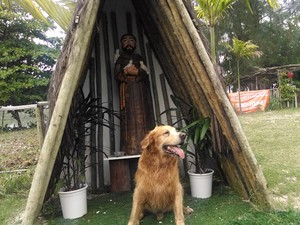 Altar em homenagem a São Francisco de Assis que fica em parque dedicado ao lazer canino na Barra da Tijuca. (Foto: Cristina Boeckel/ G1)