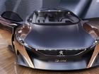 Peugeot exibe carro com nome de pedra e feito de cobre e jornal