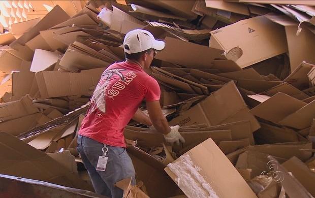 Famílias de Manaus se beneficiam da reciclagem de papelão (Foto: Amazonas TV)