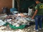 Fiscais apreendem quase uma tonelada de pescado irregular em MT