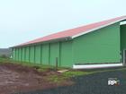 Museu de Ciências Naturais de Guarapuava reabre após três anos