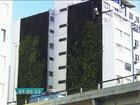 Jardins verticais são instalados em quatro prédios no Minhocão, em SP