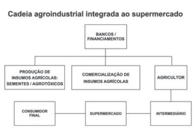SILVA, E. S. O. Circuito espacial de produção e comercialização da produção familiar de  tomate no município de São José de Ubá (RJ). In: RIBEIRO, M. A.; MARAFON, G. J. (orgs.).  A metrópole e o interior fluminense: simetrias e assimetrias geométricas.  (Foto: Rio de Janeiro: Gramma, 2009 (adaptado).)