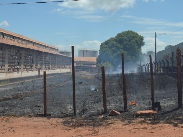 Fogo começou na vegetação (Foto: Kedma Araújo/G1)