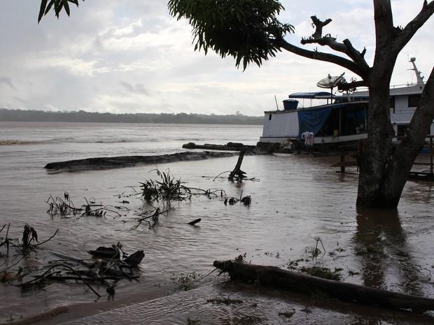 Toras de madeiras só poderão ser retiradas com auxílio de máquinas, diz Semusb (Foto: Ivanete Damasceno/G1)