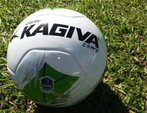 Bola do Rondoniense 2013 (Foto: Larissa Vieira)